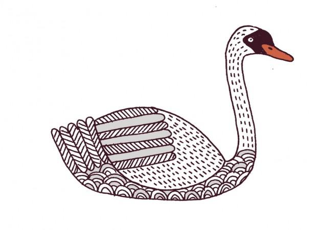 Lovebirds Type: Swan